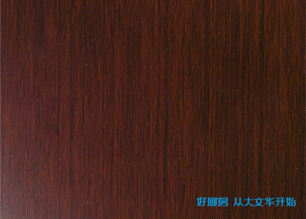不锈钢烤漆门板-金丝木